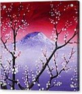 Sakura Acrylic Print by Anastasiya Malakhova