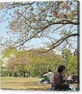 Sakura Time Acrylic Print
