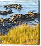 Salem Coastline Acrylic Print