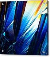 Salicylic Acid Crystals In Polarized Light Acrylic Print