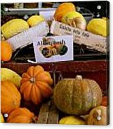 San Joaquin Valley Squash Display Acrylic Print