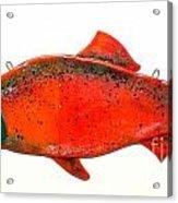 Salmon 1 Acrylic Print