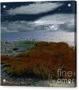 Salt Marsh At The Edge Of The Sea Acrylic Print by RC DeWinter