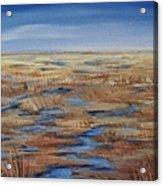 Salt Marsh In Summer Acrylic Print