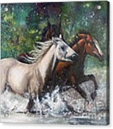 Salt River Horseplay Acrylic Print