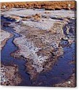 Salt Stream Confluence Acrylic Print