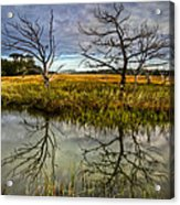 Salty Marsh At Jekyll Island Acrylic Print