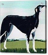Saluki Cross Acrylic Print by Maggie Rowe