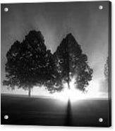 Samhain Series 1 Acrylic Print
