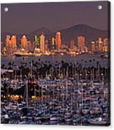 San Diego Skyline Acrylic Print by Alexis Birkill