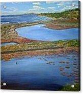 San Elijo Lagoon Acrylic Print