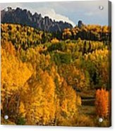 San Juan Mountains In Autumn Acrylic Print