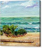 San Onofre Beach Acrylic Print