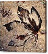 Sand Art Acrylic Print