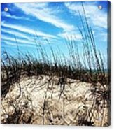 Sand Dune At Alantic Beach Acrylic Print by Joan Meyland
