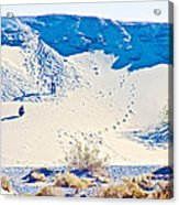 Sand Dune Bordering Salt Creek Trail In Death Valley National Park-california Acrylic Print