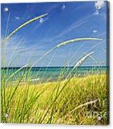 Sand Dunes At Beach Acrylic Print