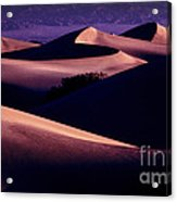 Sand Dunes At Sunrise Acrylic Print