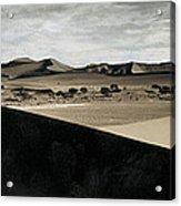 Sand Dunes In A Desert, Namib Desert Acrylic Print