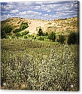 Sand Dunes In Manitoba Acrylic Print