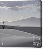 Sand Dunes Light And Shadow Acrylic Print