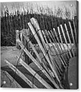 Sand Fence Acrylic Print