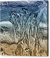 Sand Patterns Acrylic Print