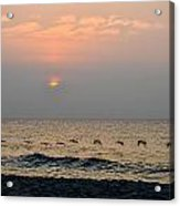 Sand Sea Sun Acrylic Print