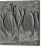 Sand Trees Acrylic Print
