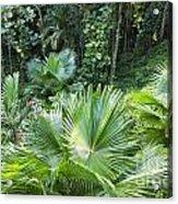 Sandals Royal Plantation Greenery Acrylic Print