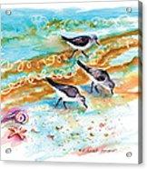 Sandpiper Trio Acrylic Print