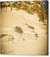 Sands Of Elafonisi Acrylic Print