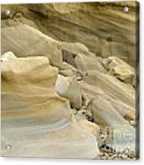 Sandstone Sediment Smoothed And Rounded By Water Acrylic Print
