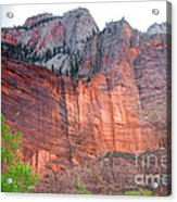 Sandstone Wall In Zion Acrylic Print by Robert Bales