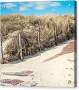 Sandy Dunes In Holland Acrylic Print