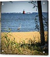 Sandy Pt Shoal Lighthouse And Blue Heron Acrylic Print