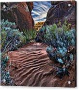 Sandy Trail Arches National Park Acrylic Print