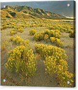 Sangre De Cristo Mountains At Great Acrylic Print
