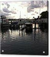 Sanibel Island Dolphin Cruise 1 Acrylic Print
