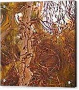 Santa Ana Winds In Southern California Acrylic Print