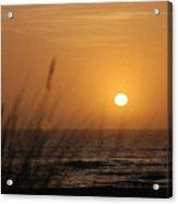 Santa Cruz Sunset Acrylic Print by Shane Kelly