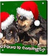 Santa Paws Is Coming To Town Christmas Greeting Acrylic Print