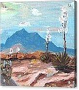 Santa  Rita Mts. Near Tucson Arizona Acrylic Print
