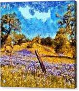 Santa Rosa Field Acrylic Print