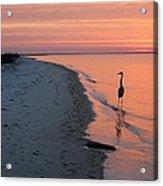 Santa Rosa Sunset Acrylic Print