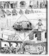 Sardine Fishery, 1880 Acrylic Print
