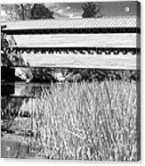 Saucks Bridge And Reeds Acrylic Print