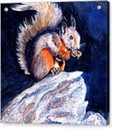 Saucy Squirrel Acrylic Print