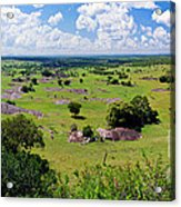 Savanna Landscape In Serengeti Acrylic Print