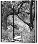 Savannah Afternoon - Black And White Acrylic Print